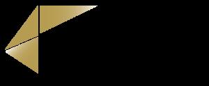 Facetron_logo-300x124
